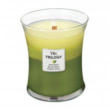 WoodWick Oslava jablek - svíčka ve skleněné dekorativní váze s dřevěným víčkem\n\n