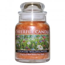 Cheerful Candle Vonná svíčka ve skle Rozkvetlá louka CB85_6oz\n\n