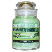 Cheerful Candle Vonná svíčka ve skle Procházka parkem CB30_6oz\n\n