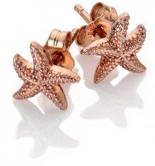 Hot Diamonds Růžově zlacené náušnice s pravými diamanty Daisy DE603