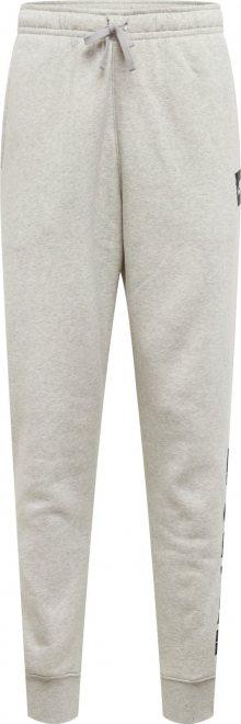 Nike Sportswear Kalhoty světle šedá