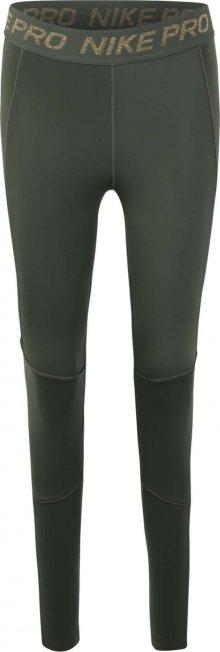 NIKE Sportovní kalhoty zelená