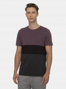 Fialovo-šedé pánské tričko Ragwear - S