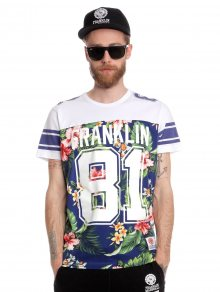 Franklin&Marshall Pánské tričko TSMVA271_ss15 vícebarevná