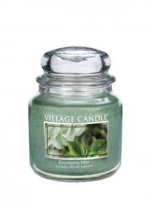Village Candle Vonná svíčka ve skle, Eukalyptus a máta - Eucalyptus mint 16 oz\n\n