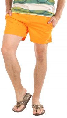 Pánské plavecké kraťasy Pierre Cardin
